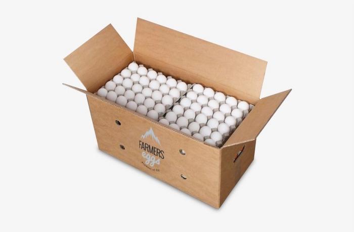 کارتن تخم مرغ صادراتی