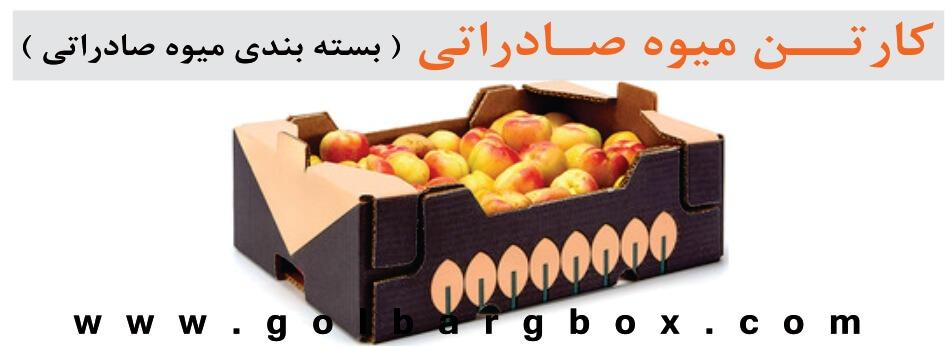کارتن میوه صادراتی ( بسته بندی میوه صادراتی )