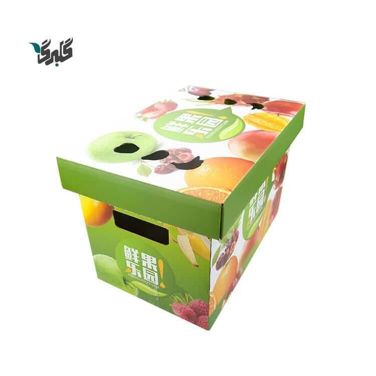 نمونه کارتن بسته بندی میوه