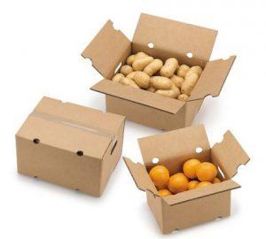 Export fruit cartons - cardboard cartons