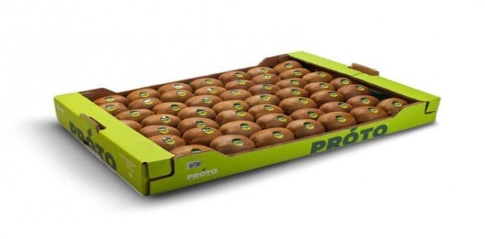 استاندارد های مهم در تولید کارتن میوه و کارتن کیوی