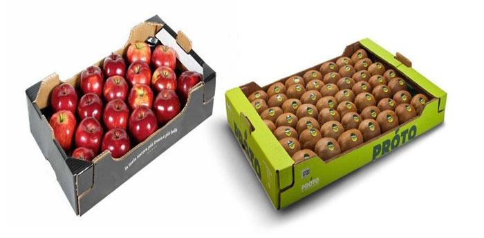اهمیت استفاده از کارتن میوه و کارتن کیوی