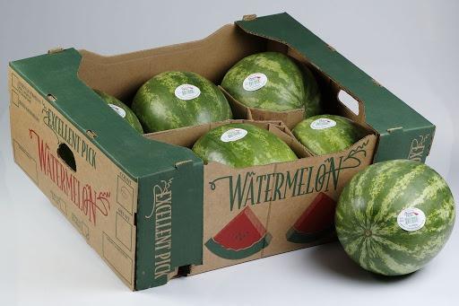 بسته بندی هندوانه